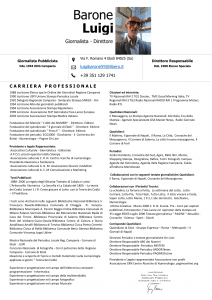 Curriculum - Media